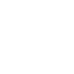 AYF Digital Archives